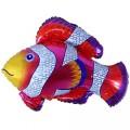 """Рыба - Клоун (пёстрая) 32""""×35""""(81см×89см) Фигура Большая"""