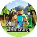 "Тарелки (18см) ""Minecraft"""